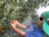 farm4.JPG